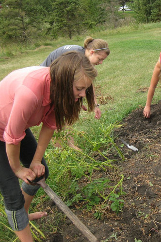 Micah Centre students maintaining a garden