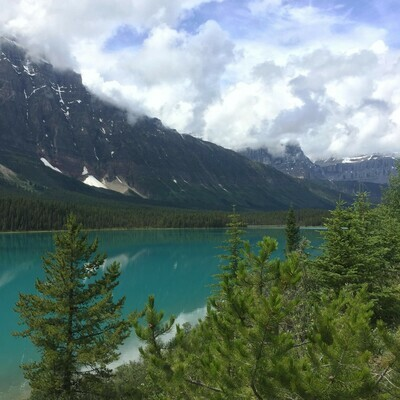 Evergreen trees in foreground, teal coloured lake and Rocky mountains in background.