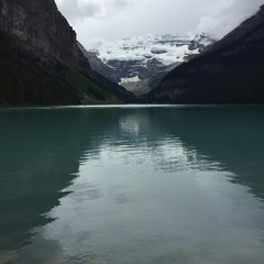 Dark teal coloured Lake Louise with snow capped mountain in the background.