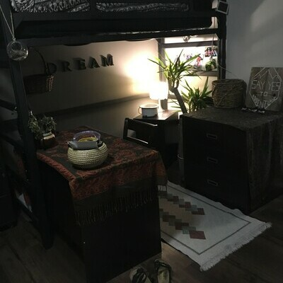 Desk space with plants and lighting underneath loft bed.