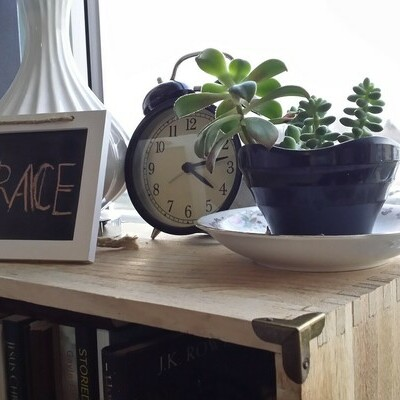 Old style alarm clock beside succulent